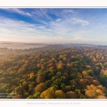 Foret_Crecy_drone_Automne_01_11_2016_006-border