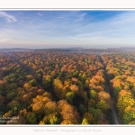 Foret_Crecy_drone_Automne_01_11_2016_007-border