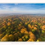 Foret_Crecy_drone_Automne_01_11_2016_008-border