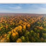 Foret_Crecy_drone_Automne_01_11_2016_009-border
