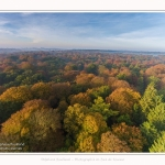 Foret_Crecy_drone_Automne_01_11_2016_012-border