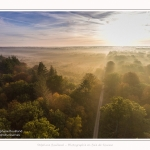 Foret_Crecy_drone_Automne_01_11_2016_015-border