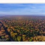 Foret_Crecy_drone_Automne_01_11_2016_017-border