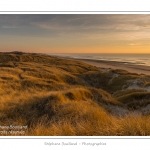 Coucher de soleil sur les dunes entre Fort-Mahon et la Baie d'Authie - Peu à peu le soleil disparait à l'horizon et colore le ciel au dessus des dunes du Marquenterre. Saison : Hiver - Lieu :  Fort-Mahon, côte Picarde, Somme, Picardie, France