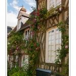 Gerberoy, un des « Plus beaux villages de France ». Ses maisons du XVIIe et XVIIIe siècles, en bois et torchis ou briques et silex, font de Gerberoy un lieu de promenade unique. Au printemps et en été, les rosiers grimpants sur les façades transforment la commune en véritable roseraie. Saison : Printemps - Lieu : Gerberoy, Oise (60), Picardie, France