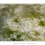 Vue de près, la glace présente de nombreuses facettes : motifs étoilés, paillettes, bulles d'air prisonnières. Ici la glace est de plus teintée en vert par les algues. Saison : Hiver - Lieu : Baie de Somme, Somme, Picardie, France, Côte Picarde, Picardie Maritime