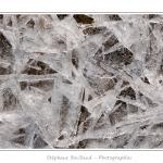Vue de près, la glace présente de nombreuses facettes : motifs étoilés, paillettes, bulles d'air prisonnières. Saison : Hiver - Lieu : Baie de Somme, Somme, Picardie, France, Côte Picarde, Picardie Maritime