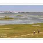 Grande marée en baie de Somme au Cap Hornu (Saint-Valery-sur-Somme)