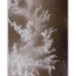 Les bulles d'air dessinent des motifs dans la glace.  Février 2012 : vague de froid intense sur la France. Toute la Baie de Somme est gelée. Saison : Hiver, Lieu : Le Crotoy, Baie de Somme, Somme, Picardie,France, Côte Picarde