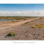 Vue sur la réserve naturelle - Saison : Printemps - Lieu : Hâble d'Ault, Cayeux-sur-mer / Ault, Baie de Somme, Somme, Picardie, France