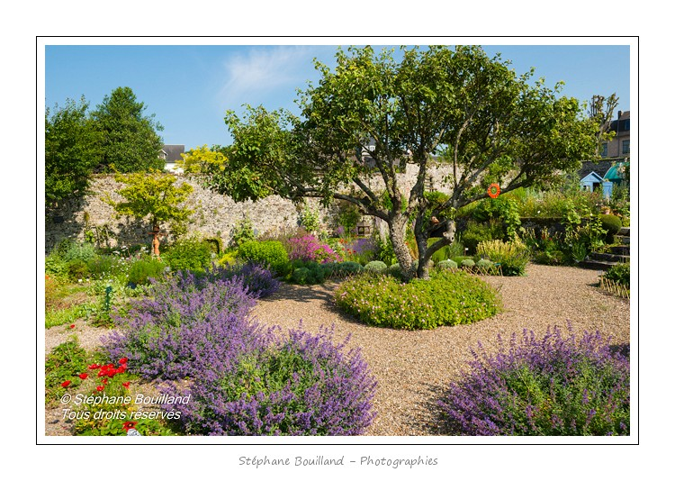 L'Herbarium est un jardin perché sur les remparts de la cité médiévale, au coeur de Saint-Valery. C'était autrefois le jardin des religieuses et il a conservé un pommier et des groseillers centenaires. Le jardin, constitué de trois terrasses, a été restauré en 1995 par une association de bénévoles qui continue de l'entretenir et de l'ouvrir au public. Saison : été - Lieu : Saint-Valery-sur-Somme, Baie de Somme, Somme, Picardie, France