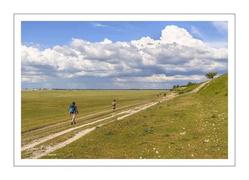Cyclistes et randonneurs sur le chemin le long des mollières au Cap hornu