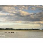 Longe-côte au Crotoy