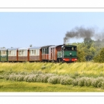 France, Somme (80), Baie de Somme, Noyelles-sur-Somme, Le petit tran de la baie de Somme // France, Somme (80), Baie de Somme, Noyelles-sur-Somme, the little train in the bay of Somme