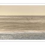 Promeneurs sur les bancs de sable découverts par la marée basse