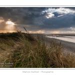Promenade entre deux orages dans la baie de Somme entre Le Hourdel et Cayeux-sur-mer. Saison : Automne - Lieu : Le Hourdel, Baie de Somme, Somme, Picardie, France