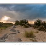 Promenade entre deux orages dans la baie de Somme le long de l'ancienne route ensablée entre Le Hourdel et Cayeux-sur-mer. Saison : Automne - Lieu : Le Hourdel, Baie de Somme, Somme, Picardie, France