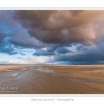 Promenade entre deux orages dans la baie de Somme à marée basse en suivant un des ruisseaux qui parcourrent la baie entre Le Hourdel et Cayeux-sur-mer. Saison : Automne - Lieu : Le Hourdel, Baie de Somme, Somme, Picardie, France