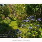 Les_jardins_des_lianes_0008-border