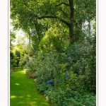Les_jardins_des_lianes_0031-border