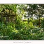 Les_jardins_des_lianes_0032-border