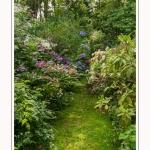 Les_jardins_des_lianes_0053-border