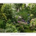Les_jardins_des_lianes_0054-border