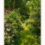 Les_jardins_des_lianes_0055-border