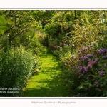 Les_jardins_des_lianes_0065-border