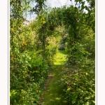 Les_jardins_des_lianes_0076-border