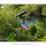 Les_jardins_des_lianes_0086-border