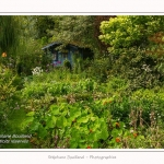 Les_jardins_des_lianes_0089-border