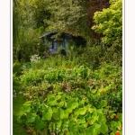 Les_jardins_des_lianes_0096-border