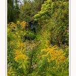 Les_jardins_des_lianes_0097-border