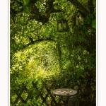 Les_jardins_des_lianes_0099-border
