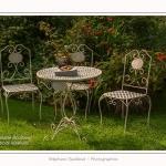 Les_jardins_des_lianes_0105-border