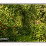 Les_jardins_des_lianes_0118-border