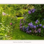 Les_jardins_des_lianes_0119-border