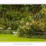 Les_jardins_des_lianes_0130-border