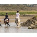 Cavaliers dans le lit de la Maye en Baie de Somme
