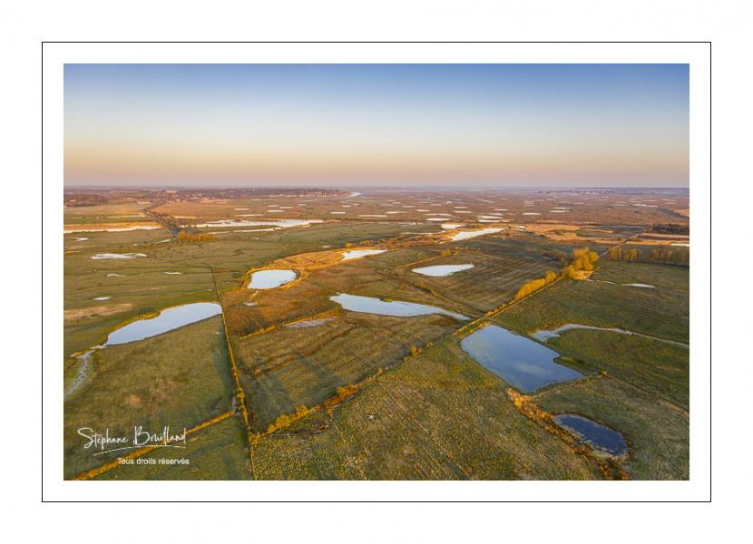 Prairies et marais de la basse vallée de la Somme entre Port-le-Grand et Noyelles-sur-mer