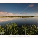 Paysage_Marais_Le_Crotoy_15_05_2016_004-border
