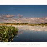 Paysage_Marais_Le_Crotoy_15_05_2016_008-border