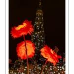 Arras, la Place des Héros illuminée pour Noël