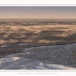 Tempête de sable en baie de Somme - saison : Hiver - Lieu : Plages de la Maye, Réserve Naturelle, Baie de Somme, Somme, Picardie, Hauts-de-France, France. Sandstorm in the Bay of Somme - season: Winter - Location: Beaches Maye, Nature Reserve, Somme Bay, Somme, Picardy, Hauts-de-France, France.