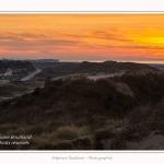 Molliere_d_aval_04_01_2015_030-border.jpg
