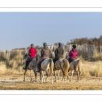 Cavaliers venus pratiquer l'équitation en baie de Somme dans la réserve naturelle