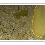 Moutons de prés salés en baie de Somme (vue aérienne)