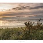 Baie-de-Somme-50x70_539