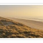 Les dunes le long de la plage de Quend-Plage (Côte Picarde)